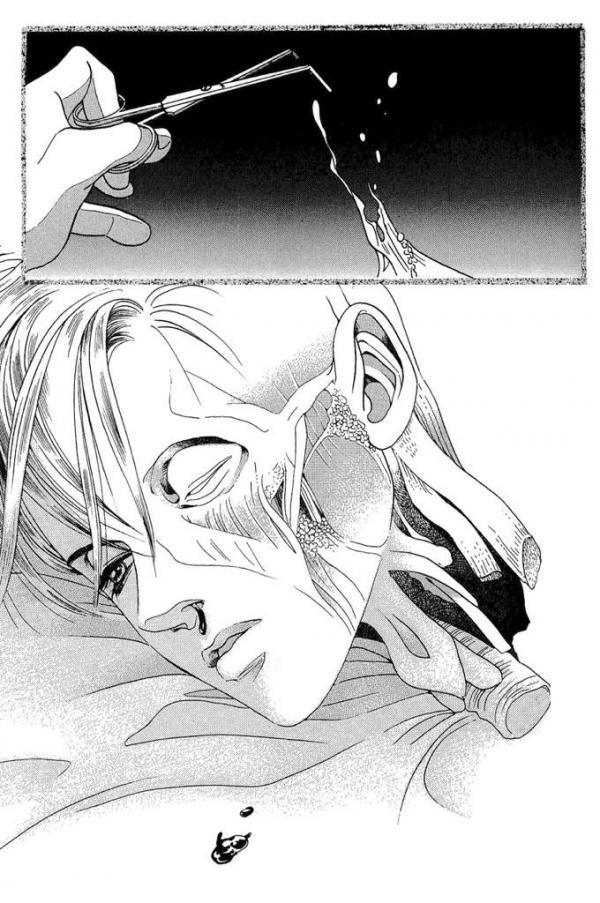 the top secret, himitsu, manga, reiko shimizu